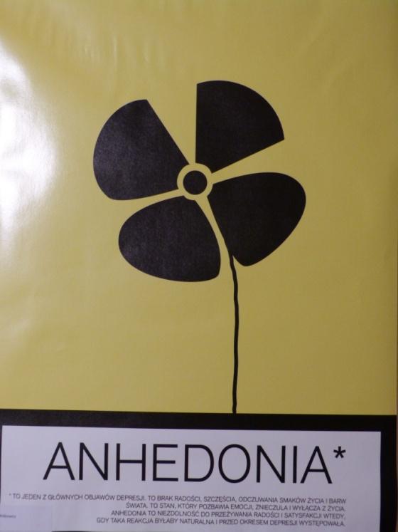 6a-witkowicz-anna